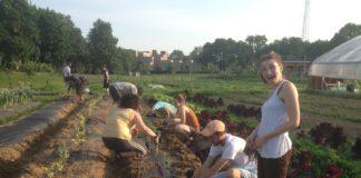 Jewish Farm School volunteers work at an urban farm.