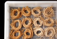 Rolls of bucatina pasta from the pasta lab
