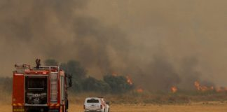 A firetruck heads into a brush fire in Israel