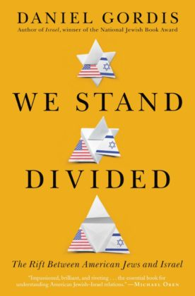 We Stand Divided cover art