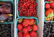 Cartons of fruit