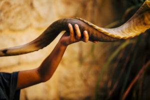 shofar being held