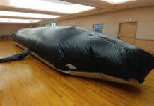 The inflatable whale