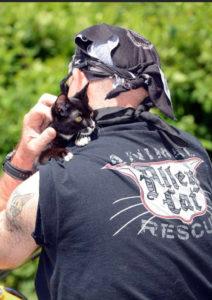 Al Chernoff holding his cat