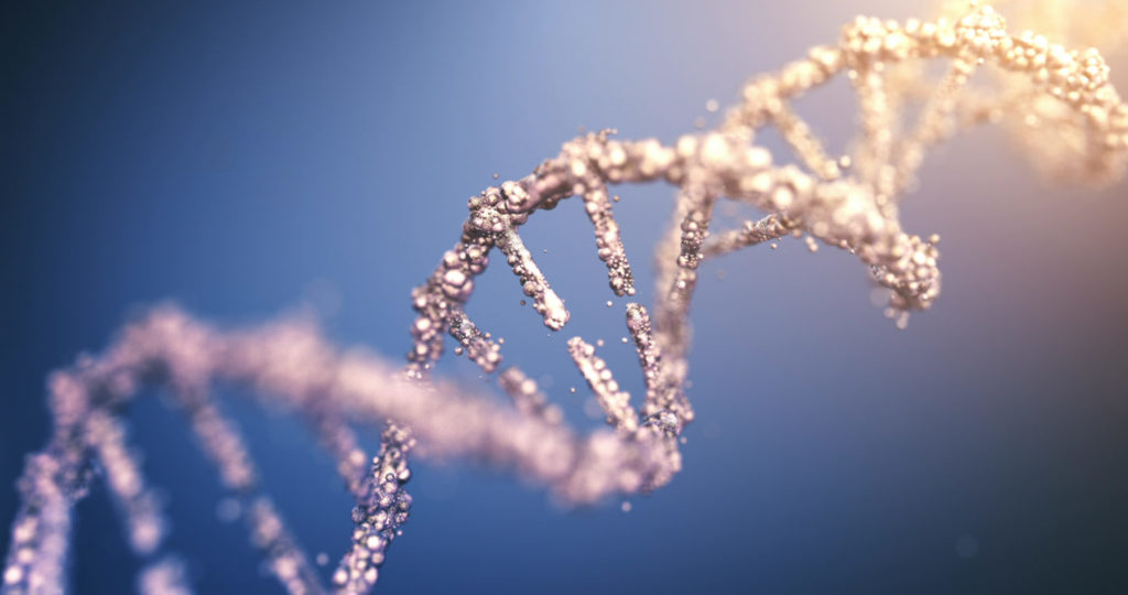 rendered depiction of the human DNA