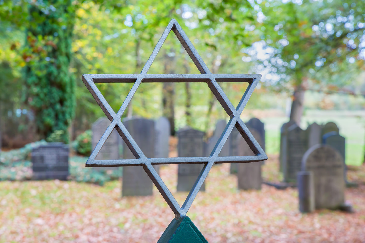 Jewish graveyard with star of David and trees. I took this photo of a jewish cemetery in my hometown Delden in the Netherlands.
