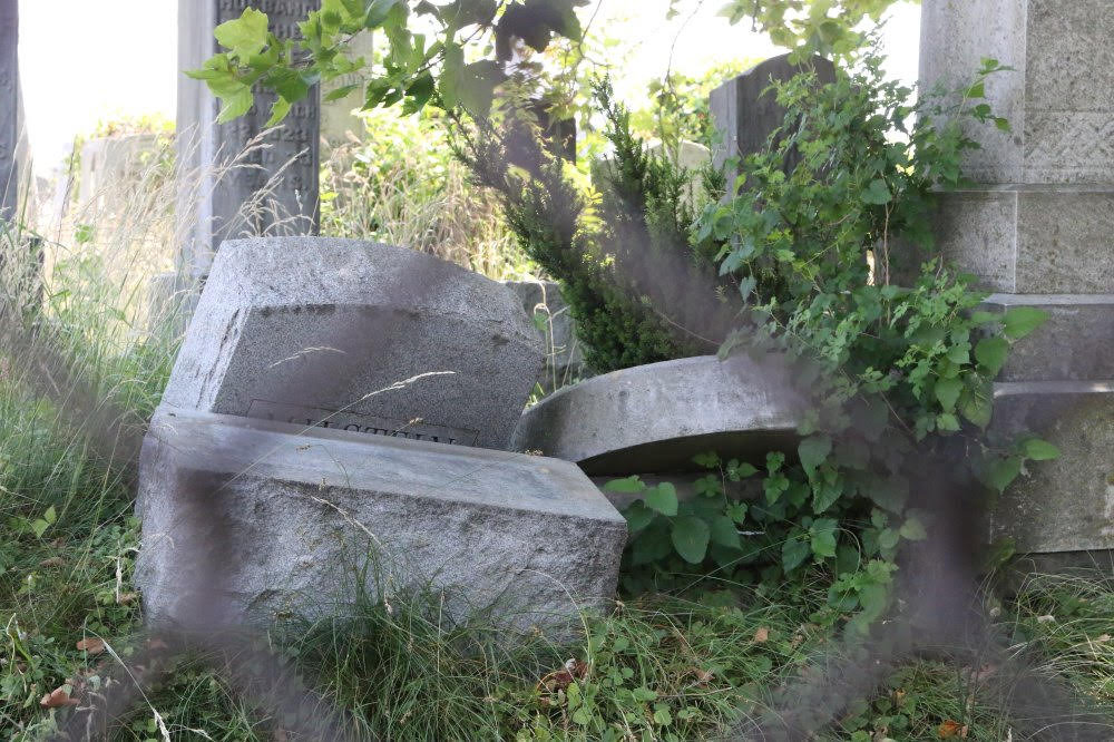 toppled and overgrown headstones